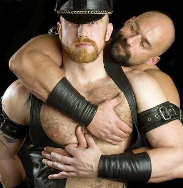 galerias osos gays: