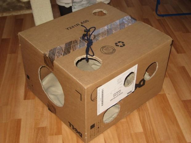5 juguetes para tu gato que puedes hacer en casa sdp - Casas para gatos baratas ...