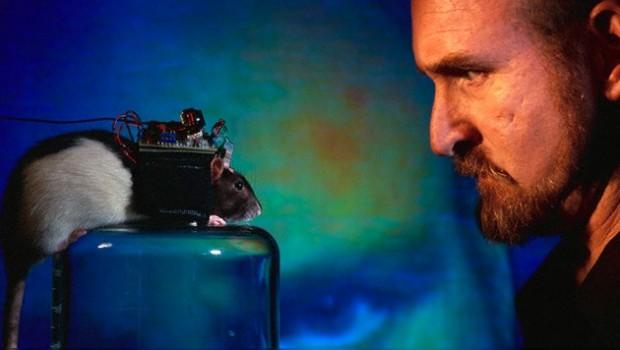 Desarrollan interfaz telepático para manipular seres vivos
