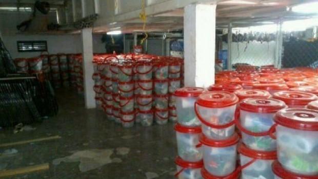 Hallan 10 mil despensas en un centro de espectáculos del PRI en Cozumel, Q.Roo