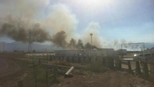Mueren 100 mil gallinas en granja de Bachoco por incendio