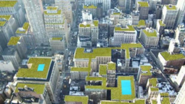 Mancera logra acuerdos ecológicos y de agricultura en azoteas verdes al visitar Nueva York