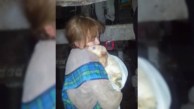Con un beso, Olga se despidió de cada uno de sus 143 perros
