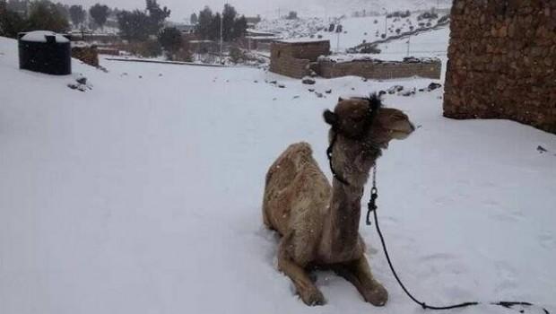 Después de 158 años, nieva en Egipto