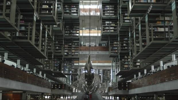 Investigan presunto suicidio en Biblioteca Vasconcelos