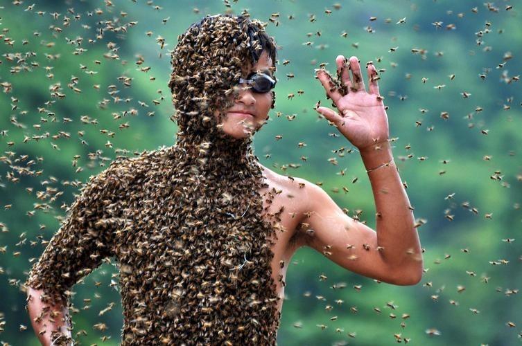 piquete de abeja en el pene