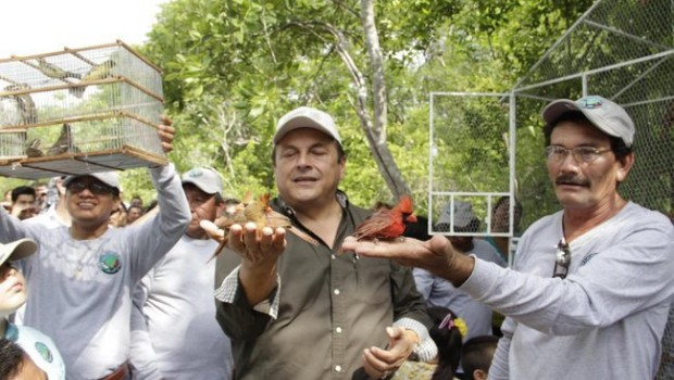 Semarnat libera más de 200 aves canoras en Yucatán