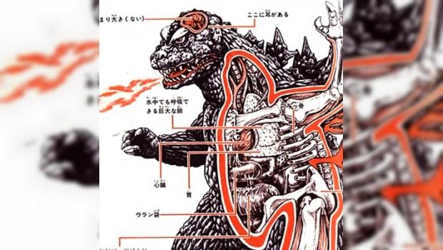 Conoce la anatomía de Godzilla y sus amigos con las siguientes ...