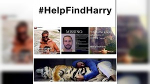 (Help Find Harry) Collage de imágenes de Harry