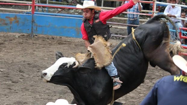 Fallece Joven Tras Montar A Un Toro En Jaripeo De Morelos