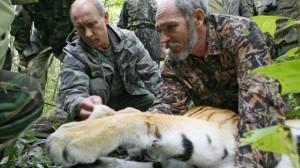 Vladimir Putin participa de liberación de 5 cachorros de tigre rescatados